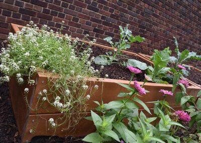 Phipps Conservatory garden bed