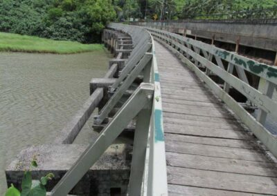 Waimea ped bridge 1